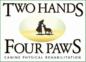 Two Hands Four Paws