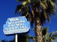 VCA Wilshire Animal Hospital