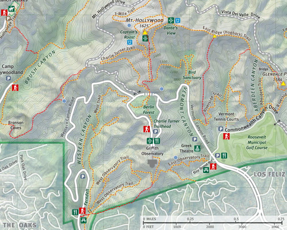 Mt. Hollywood Trail