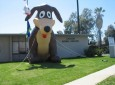 Carson/Gardena Animal Care Center