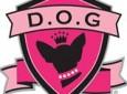 D.O.G. Boutique
