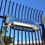 Arts District Dog Park