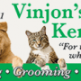 Vinjon's Kennel – Chino