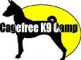 Cagefree K-9 Camp