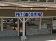 Chino Hills Pet Grooming