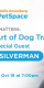 Animal Matters: The Art of Dog Training with Joel Silverman
