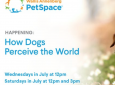 Happening: How Dogs Perceive the World