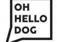 Oh Hello Dog