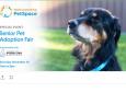 Senior Pet Adoption Fair