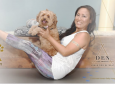 Dog Yoga with Doga Alchemy