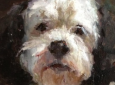 Learn to Paint Your Dog with Stacy Kamin