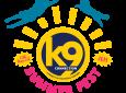 k9 connection's Summer Fest