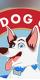 Adoptable Dog Yoga