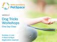 Dog Tricks Workshops