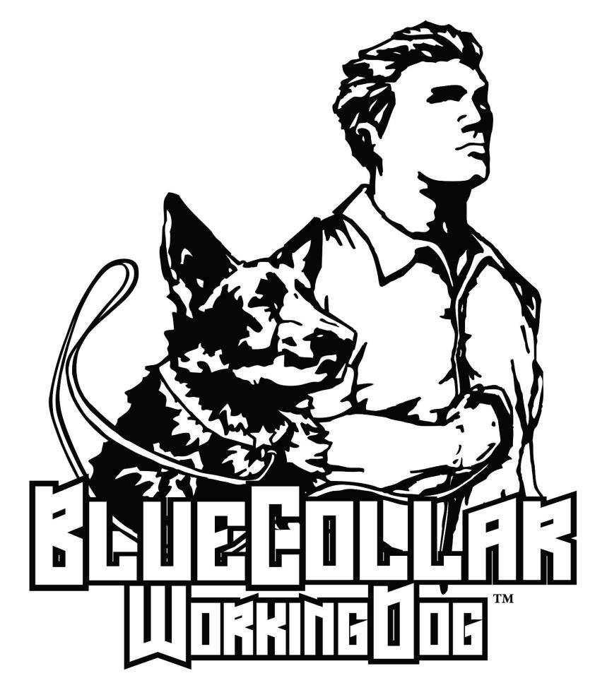Pin Police K9 Coloring Page