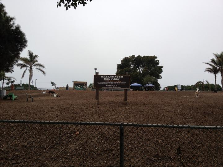 westminster dog park