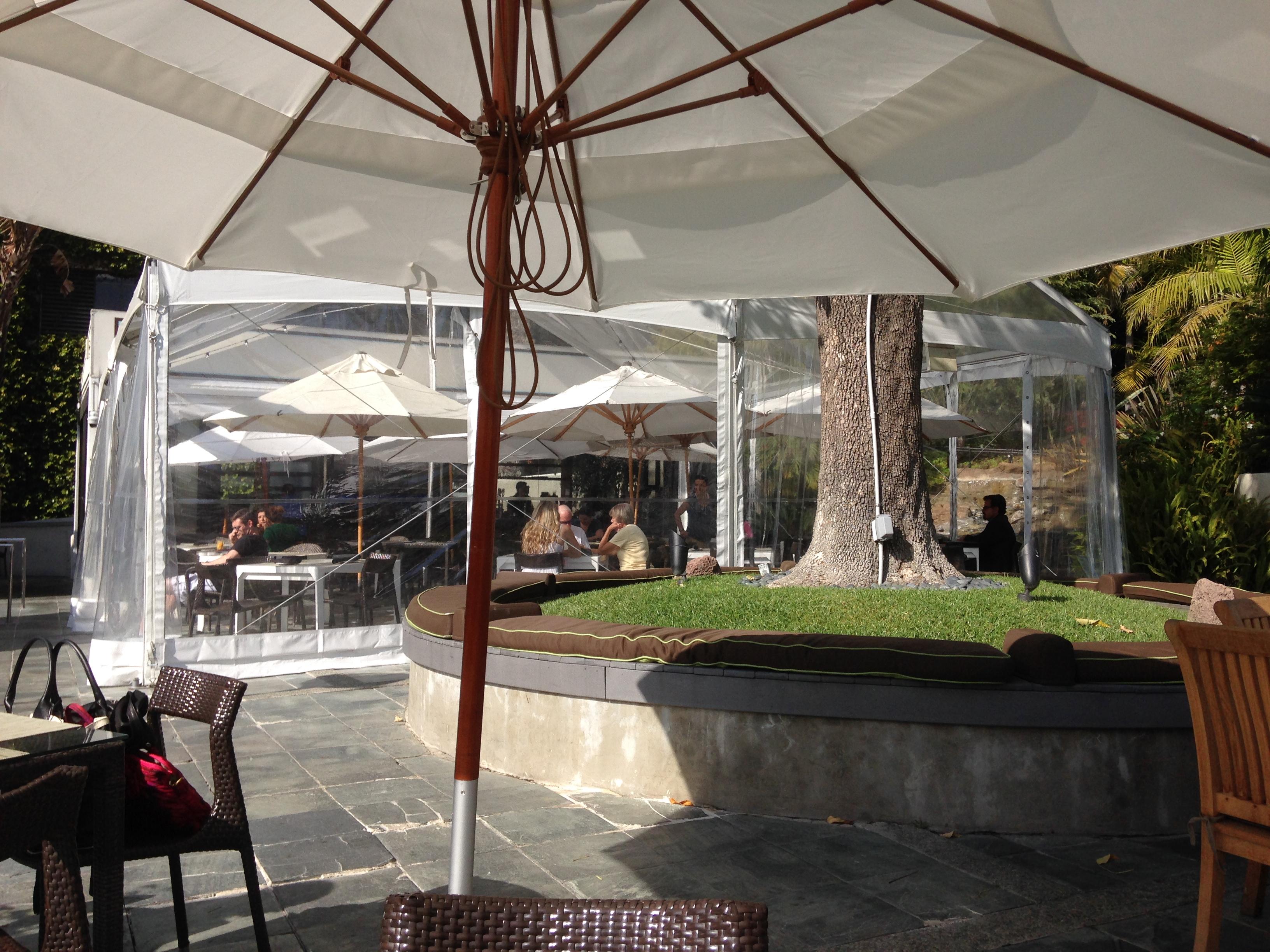 The backyard w hotel westwood westwood los angeles for Pooch hotel west los angeles