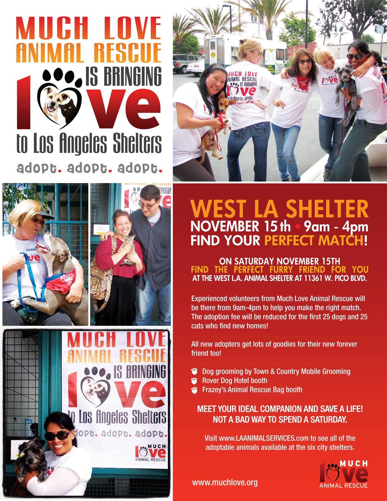 much love animal recue is bringing love to la shelters   los angeles