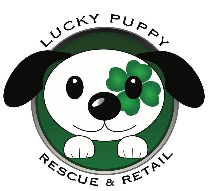 Lucky Puppy Rescue Retail Studio City Los Angeles