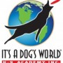 its a dogs world