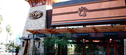 Lazy Dog West Covina West Covina Los Angeles