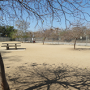 griffith dog park