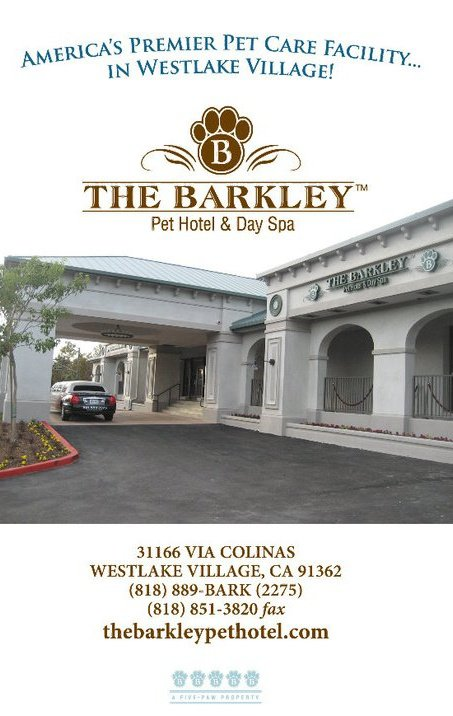 The barkley pet hotel day spa westlake village los for Dog hotel los angeles