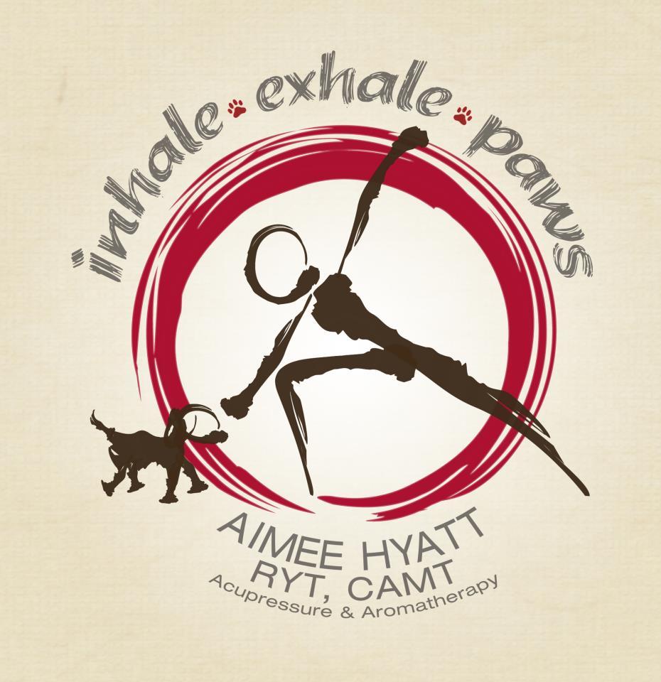 Inhale exhale paws malibu los angeles for Dog daycare santa monica
