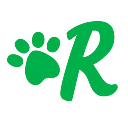Rover Dog Walking