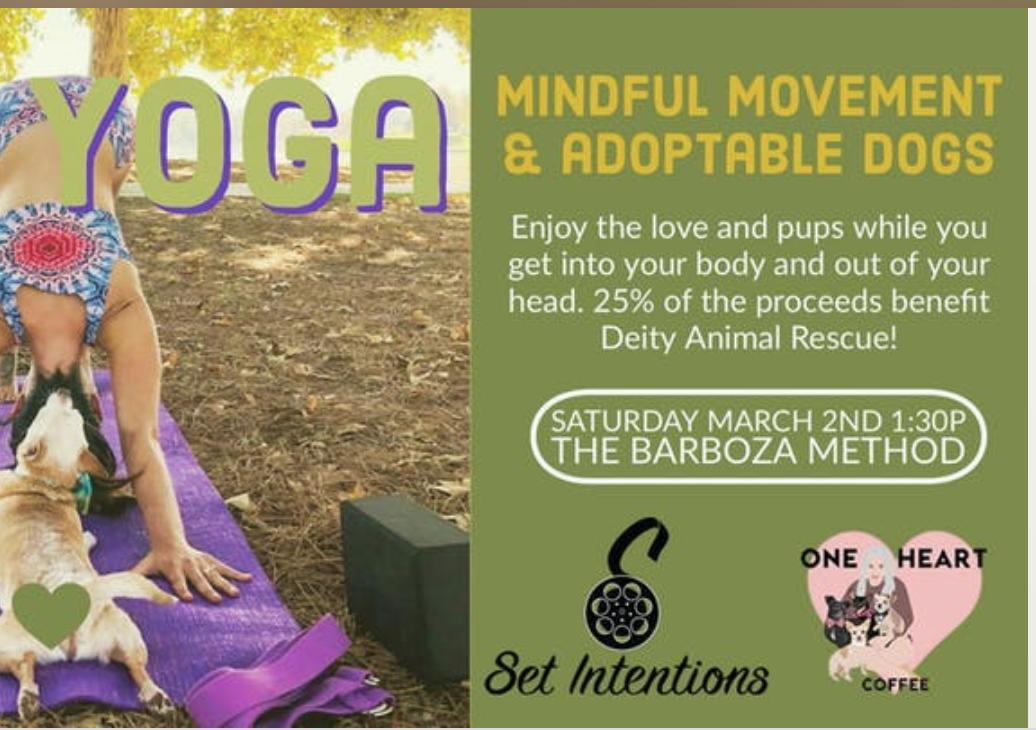 Adoptable Dog Yoga - Los Angeles - Dog Event