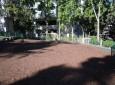 William S. Hart Park Off Leash Dog Park