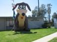 Carson/Gardena Animal Care Center