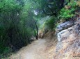 Newton Canyon Backbone Trail