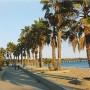 Promenade Park & Ventura Pier