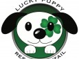 Lucky Puppy Rescue & Retail