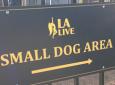 L.A. Live Dog Park