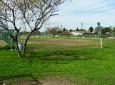 Whitnall Off-Leash Dog Park