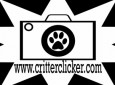 The Critterclicker
